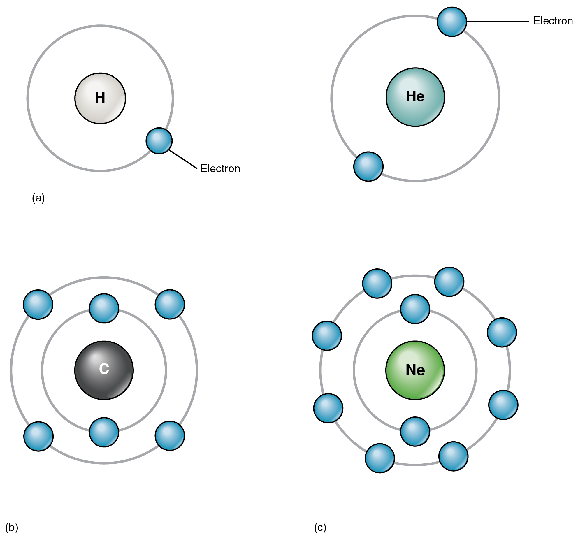 Elements and atoms the building blocks of matter anatomy and this four panel figure shows four different atoms with the electrons in orbit around the nucleus gamestrikefo Choice Image