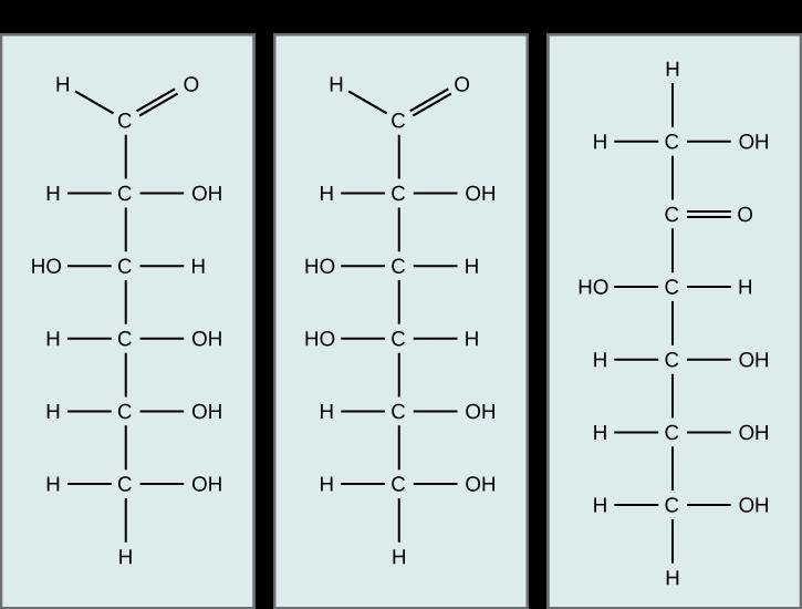 Glucose  galactose  an...