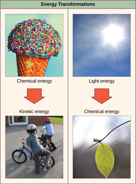 Example Of Chemical Energy For Kids