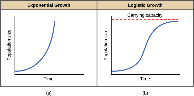 Population Growth And Regulation 183 Concepts Of Biology