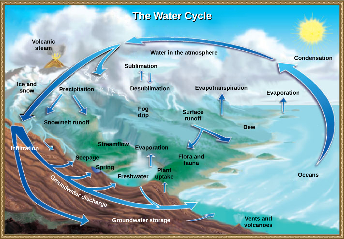 Printables Biogeochemical Cycles Worksheet biogeochemical cycles concepts of biology illustration shows the water cycle enters atmosphere through evaporation evapotranspiration sublimation