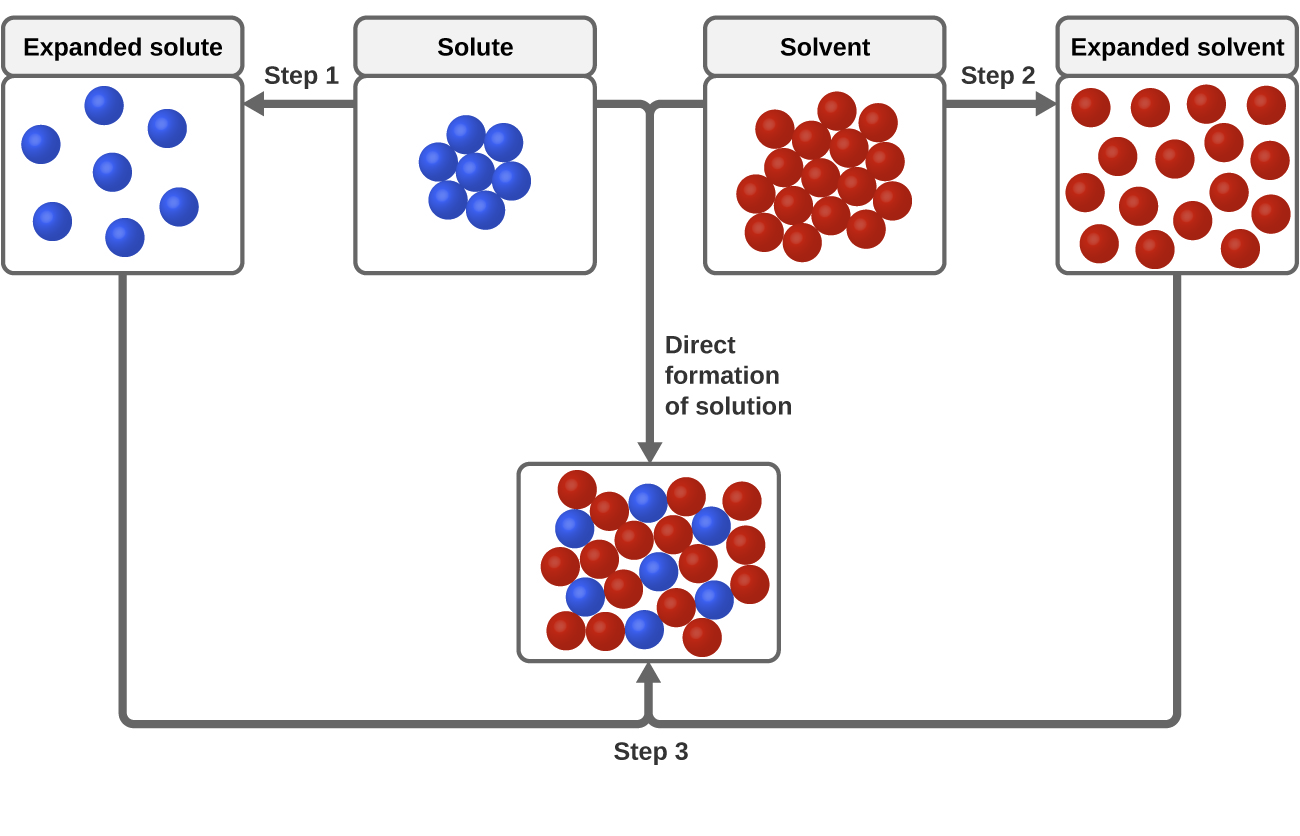 The dissolution process chemistry this schematic representation of dissolution shows a stepwise process involving the endothermic separation of solute and solvent species steps 1 and 2 and pooptronica Images
