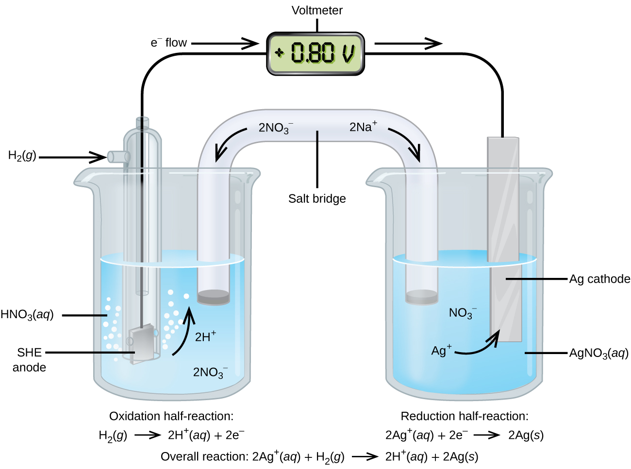 Standard reduction potentials chemistry a galvanic cell can be used to determine the standard reduction potential of ag the she on the left is the anode and assigned a standard reduction ccuart Image collections