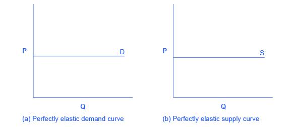 Polar Cases of Elasticity and Constant Elasticity · Economics