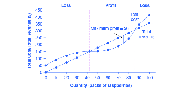 How Perfectly Competitive Firms Make Output Decisions ...
