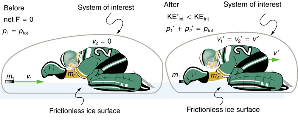 Fundamentals of Physics/Linear Momentum and Collisions