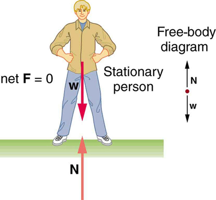 The First Condition for Equilibrium · Physics