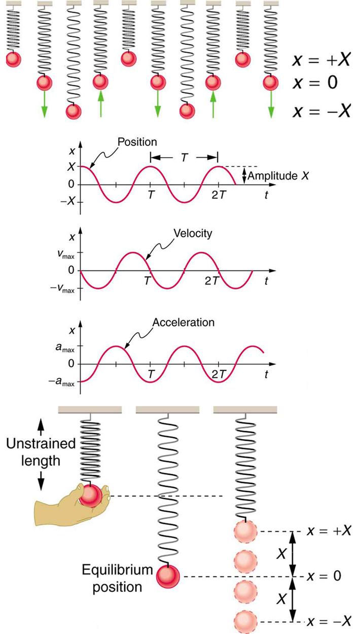 simple harmonic motion  a special periodic motion  u00b7 physics