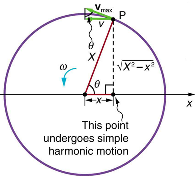 Uniform Circular Motion And Simple Harmonic Physics. The Ure Shows A Point P Moving Through Circumference Of Circle In An Angular. Worksheet. Simple Harmonic Motion Worksheet At Clickcart.co