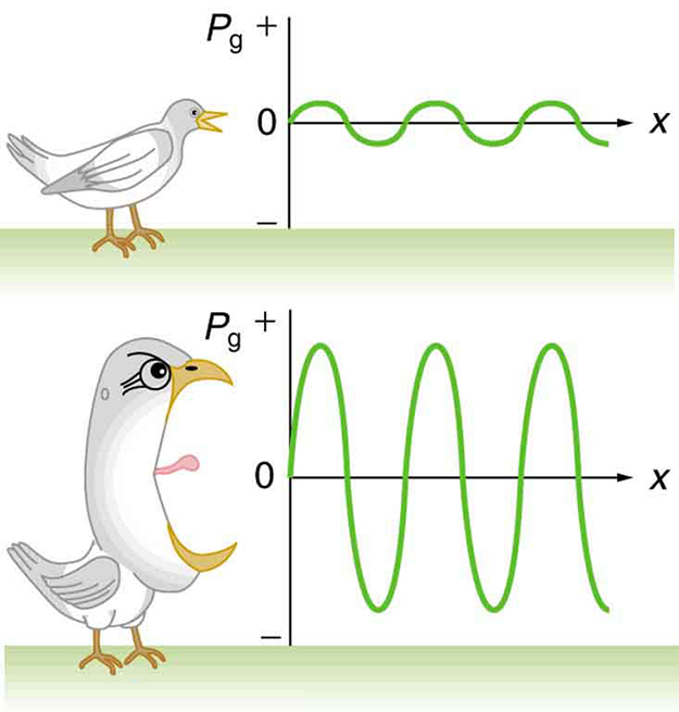The image shows two graphs, with a bird positioned to the left of each ...