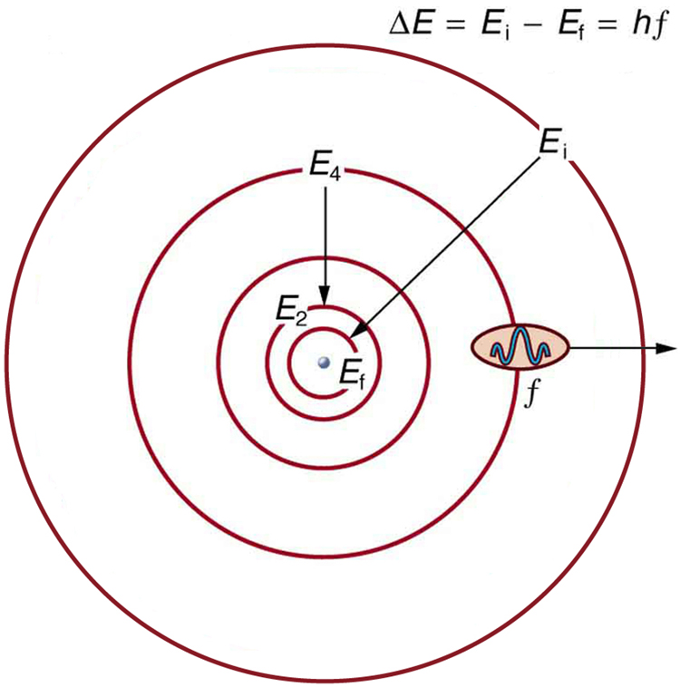 model of an atom  Labeled Hydrogen Atom