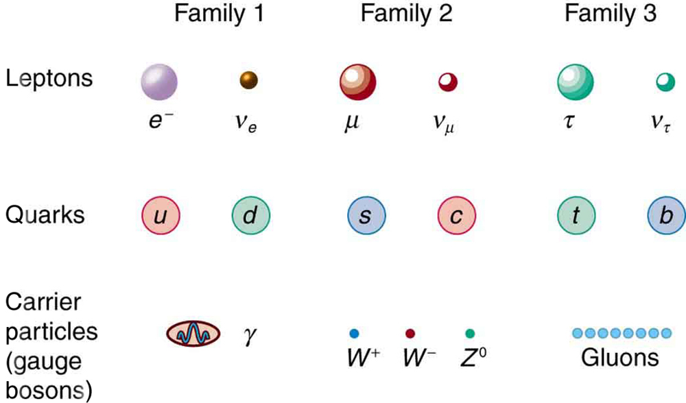 the characteristics of quarks a group of elementary particles Quantum mechanics changed our perception of elementary particles from strictly more fundamental particles - quarks elements of a particular group have.