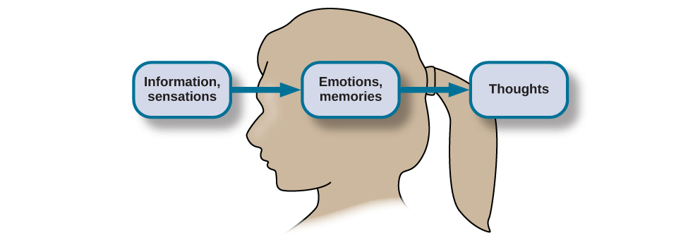 What Is Cognition Psychology